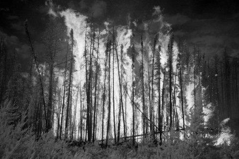 wildfires-white-heat-slide-STYB-jumbo